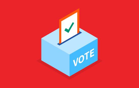Voting_Org